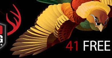 41 No Deposit Free Spins Huge Bonus At Red Stag Casino