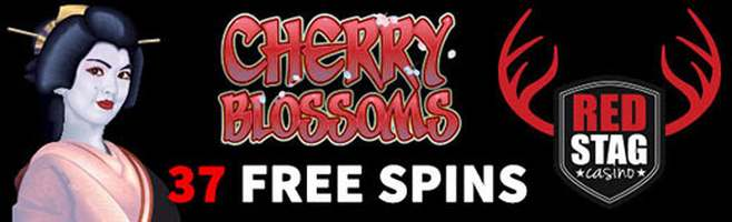 37 Free Spins plus 400% match at Red Stag Casino