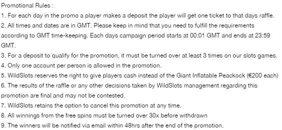 Win Lots Of Spins Raffle Wildslots Casino